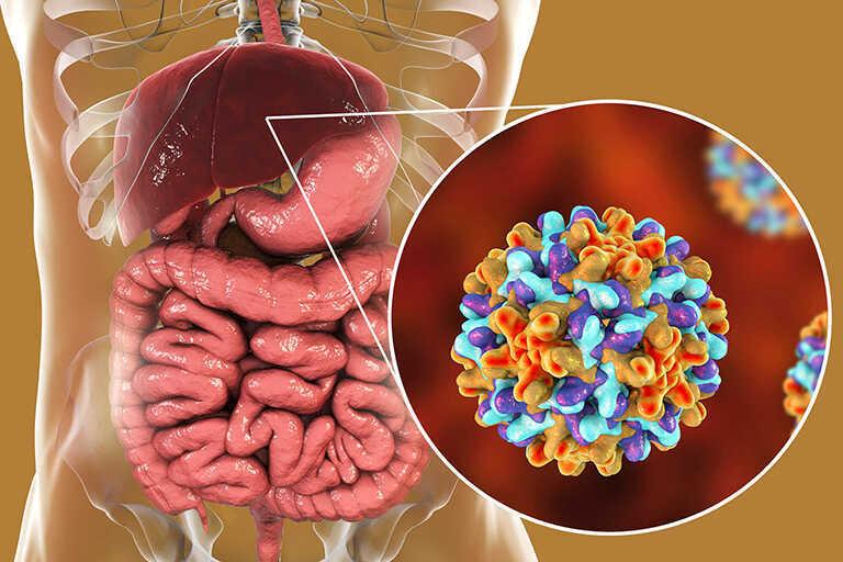 Bệnh viêm gan B mãn tính có nguy hiểm không? Có chữa được không?
