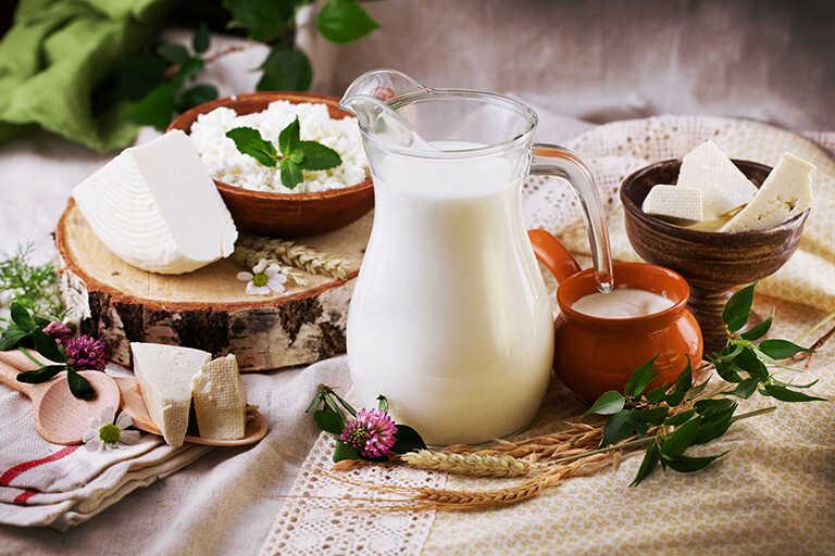Sữa và các chế phẩm từ sữa
