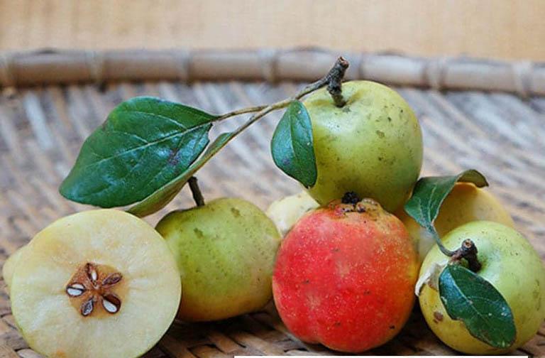 Công dụng chữa gan nhiễm mỡ của táo mèo và cách thực hiện