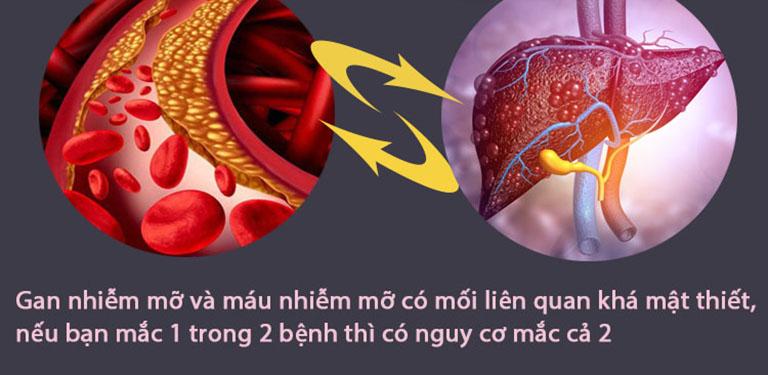 Gan nhiễm mỡ và máu nhiễm mỡ bệnh nào nguy hiểm hơn?